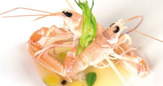 Scampi marinati all'acqua di pomodoro e puntarelle croccanti